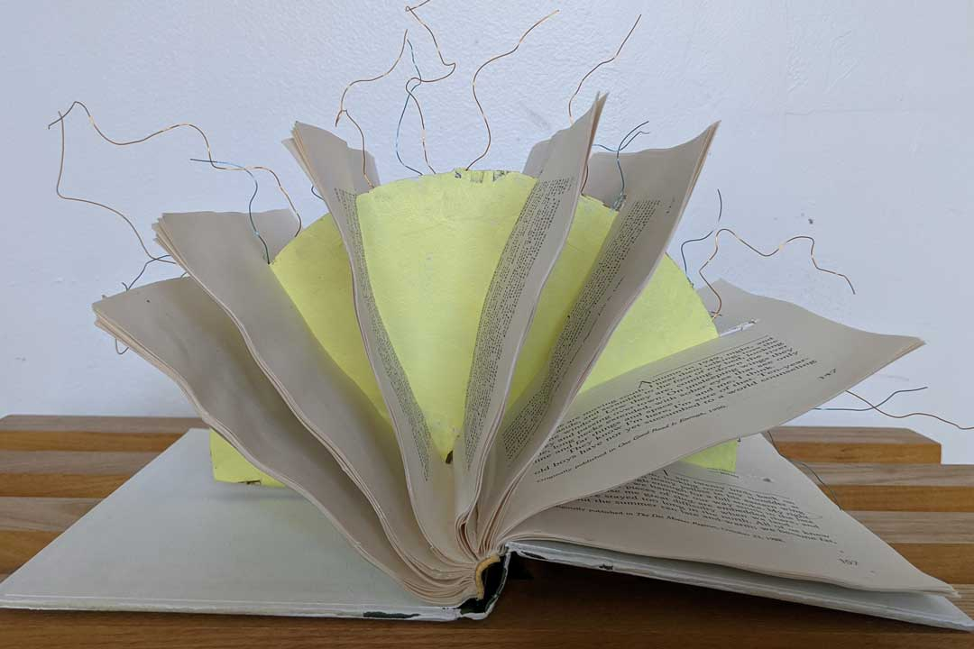 LibraryAli1