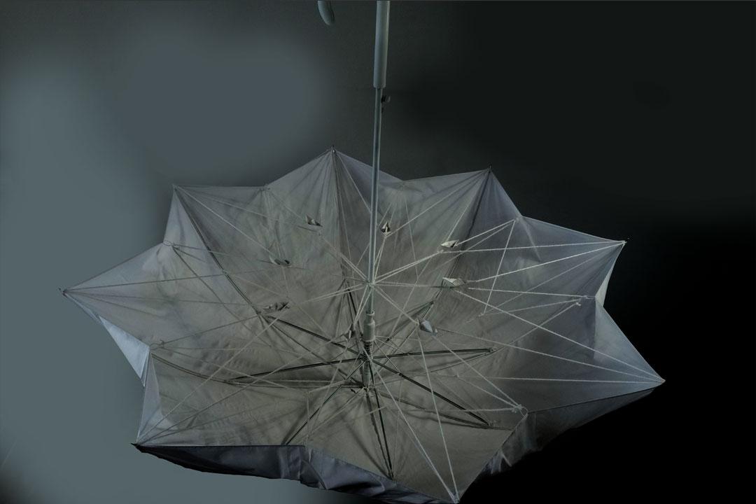 UmbrellatoriumFirstMeet2