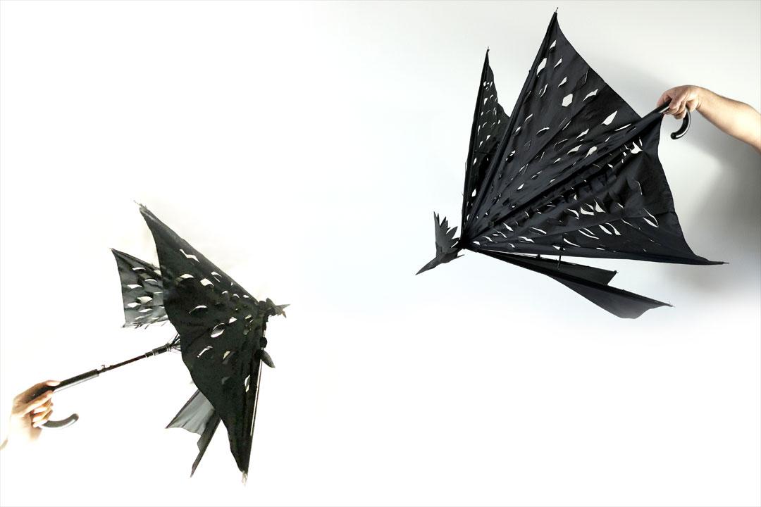 UmbrellatoriumLookCrow1