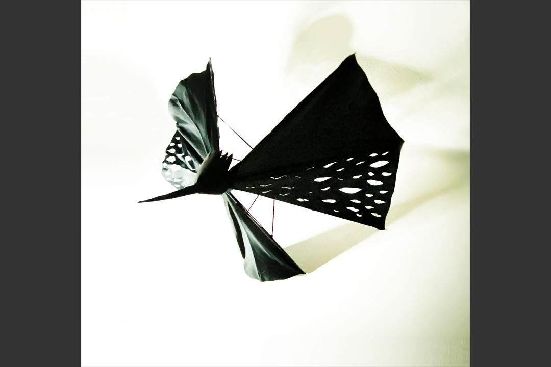 UmbrellatoriumLookCrow3