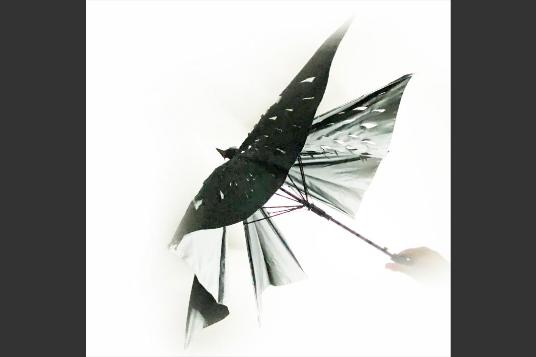 UmbrellatoriumLookCrow5
