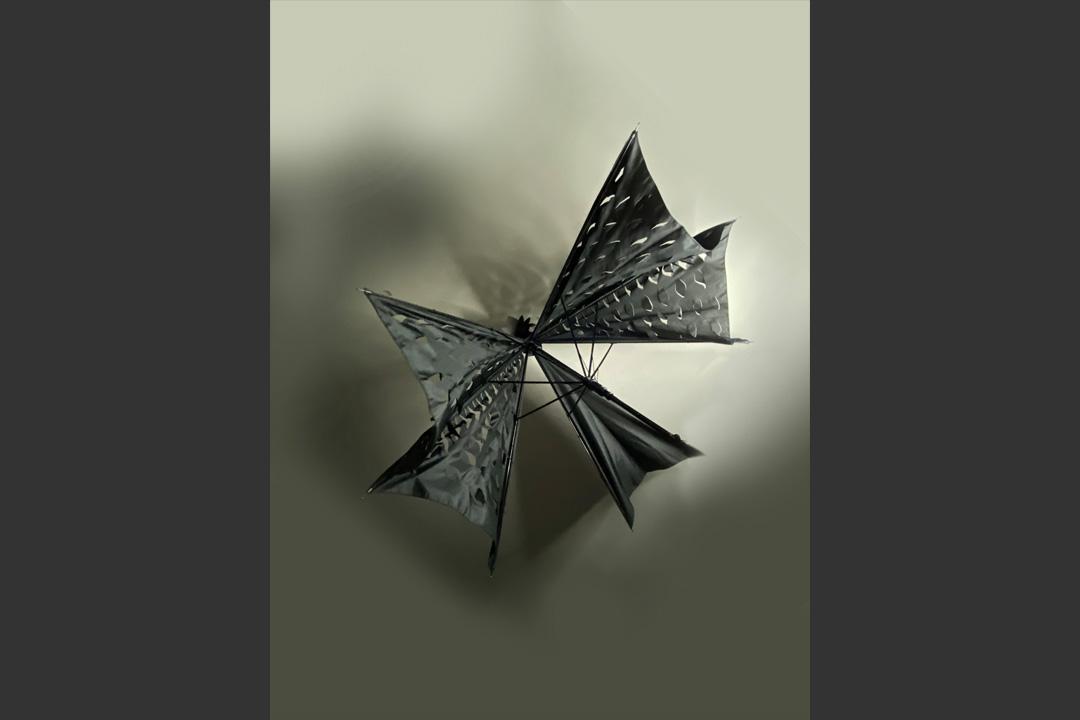 UmbrellatoriumLookCrow7