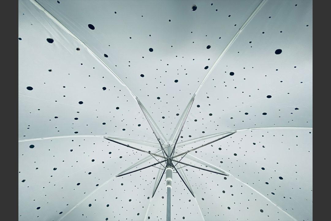 UmbrellatoriumPara3